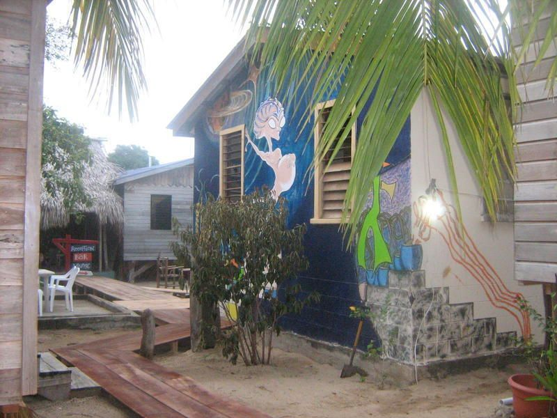 The Funky Dodo Backpackers Hostel - 0