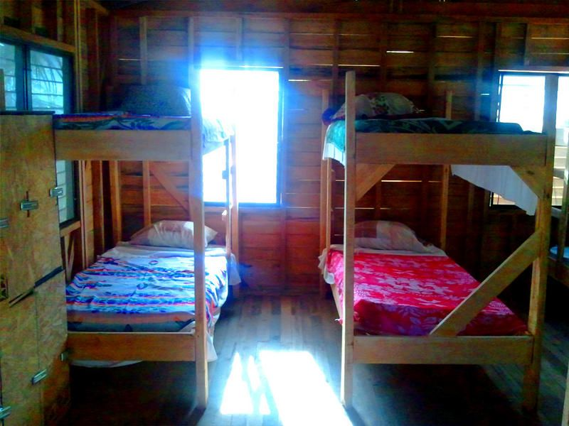 The Funky Dodo Backpackers Hostel - 2