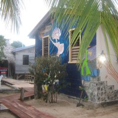 The Funky Dodo Backpackers Hostel