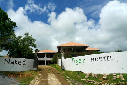 Naked Tiger Hostel - 1