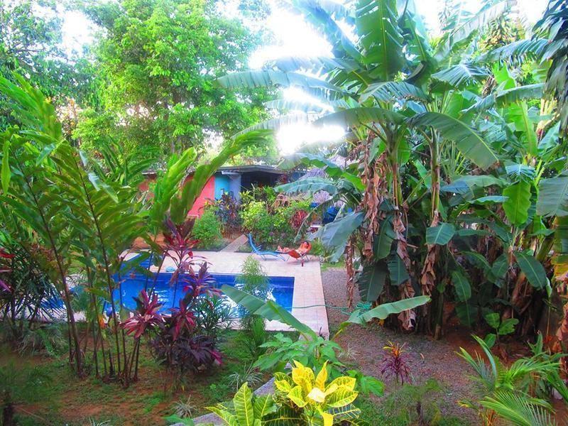 Bambu Hostel - 1