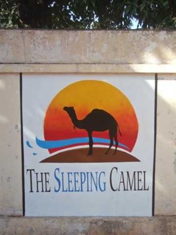 The Sleeping Camel Hostel - 0