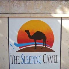 The Sleeping Camel Hostel