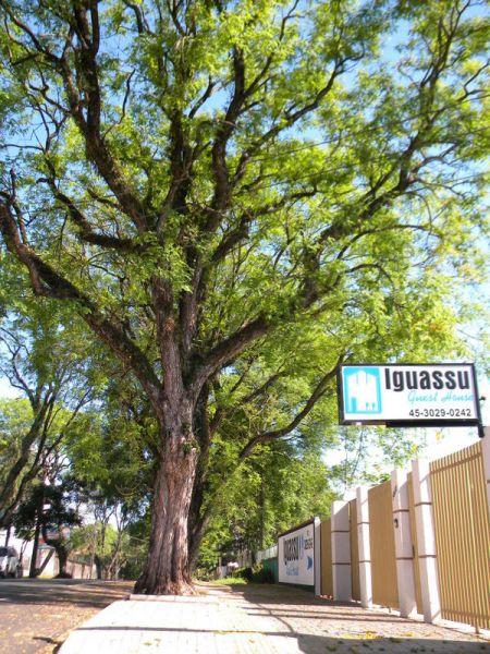 Iguassu Guest House  - 0