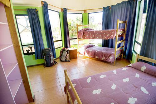 Nativa Hostel  - 0