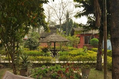 Chitwan Forest Resort - 0