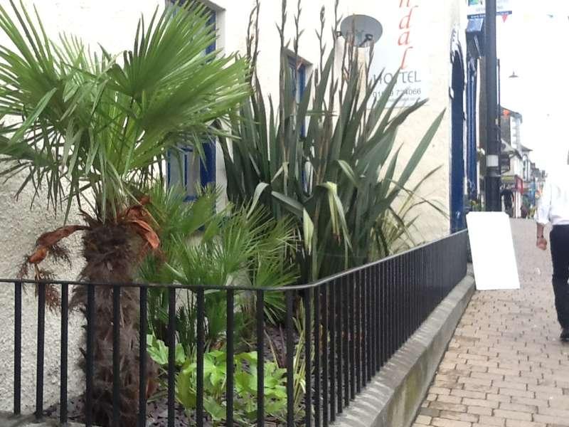 kendal hostel - 0