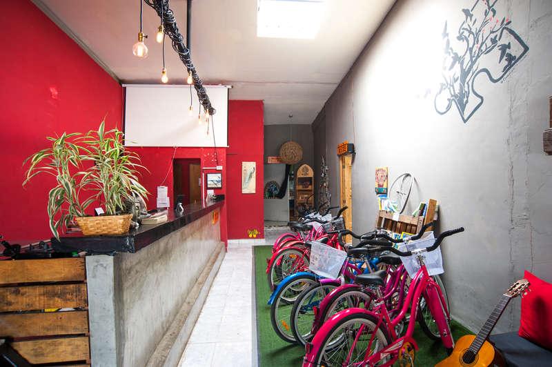 Bodhi Hostel & Lounge - 2