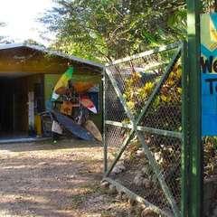 Kokua Hostel