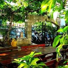 Saki Hostel & Guesthouse