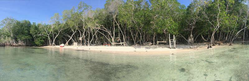 Casa Nativa Isla - 0