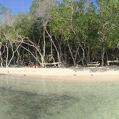 Casa Nativa Isla
