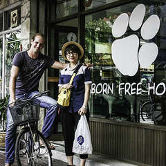 Born Free Hostel - Vista