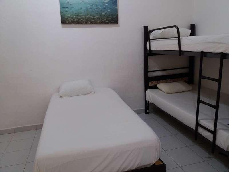 Loft 10 Hostel - 1