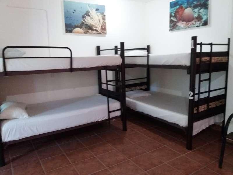 Loft 10 Hostel - 2