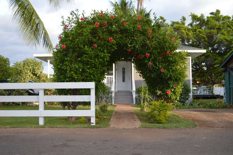 The Lahaina Beach House - 0