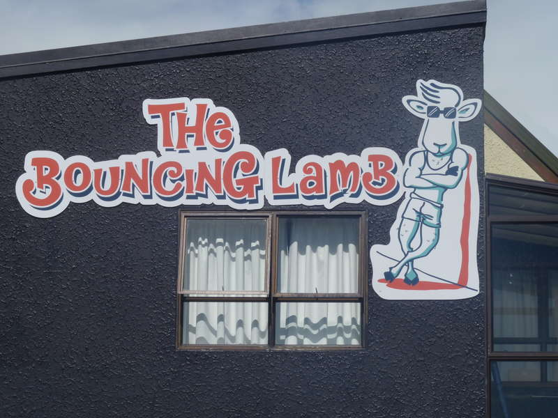The Bouncing Lamb Backpackers - 1